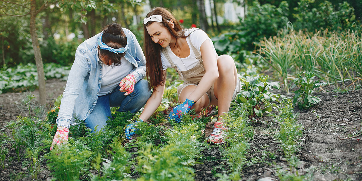 The benefits of gardening for your mental health and wellbeing