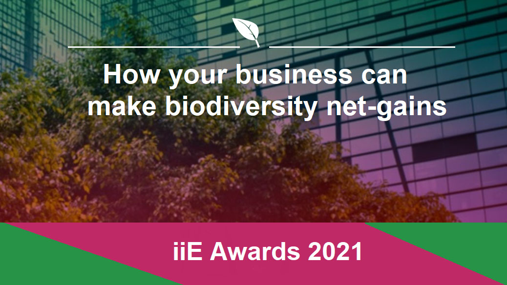 How your business can make biodiversity net-gains