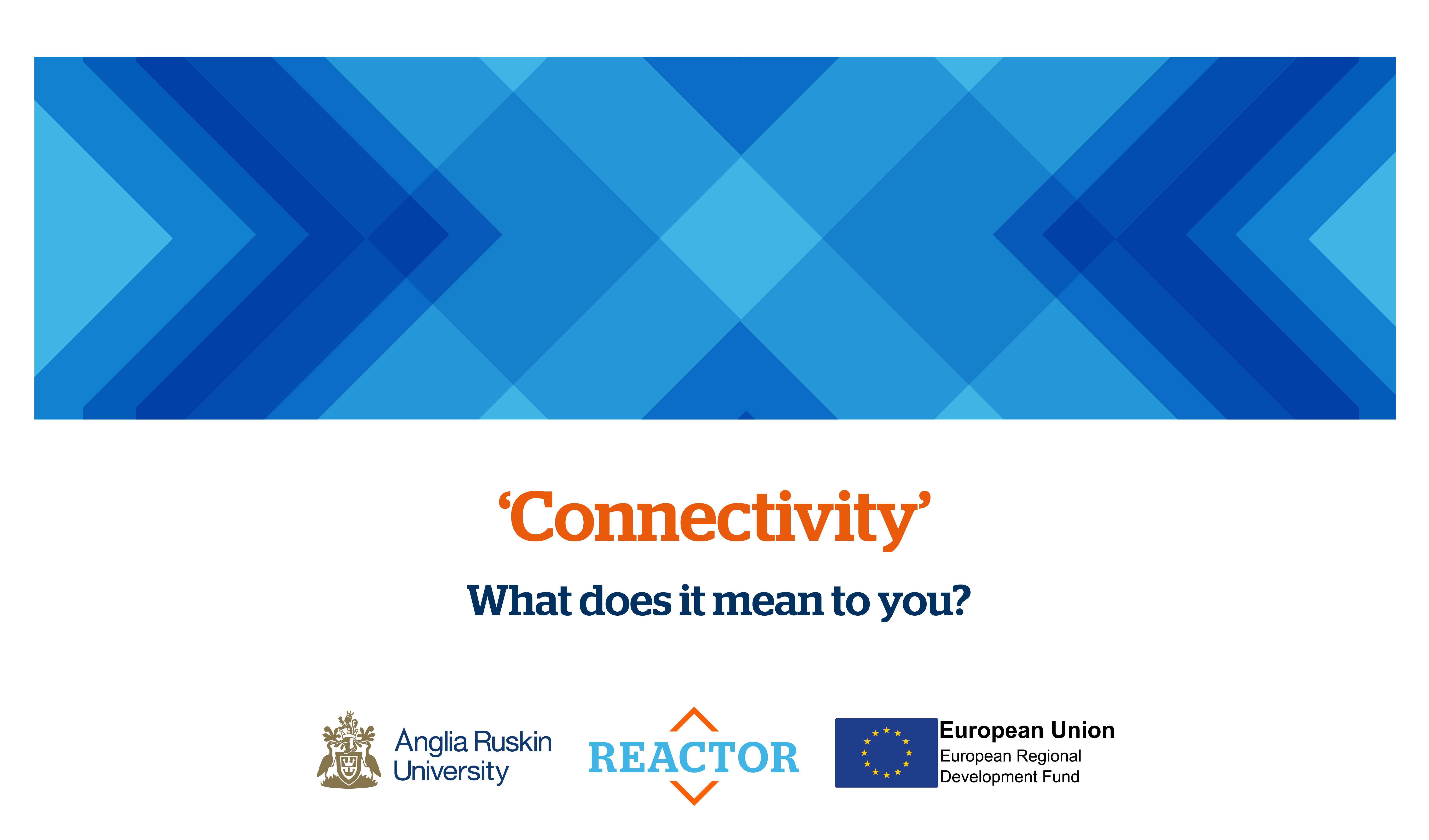 REACTOR: Connectivity - Big Gamification Seminar, Peterborough